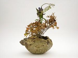 器と花の出合い展11